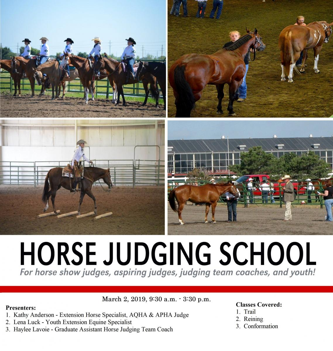 Horse Judging School Flyer