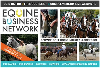 Equine Business Network Poster