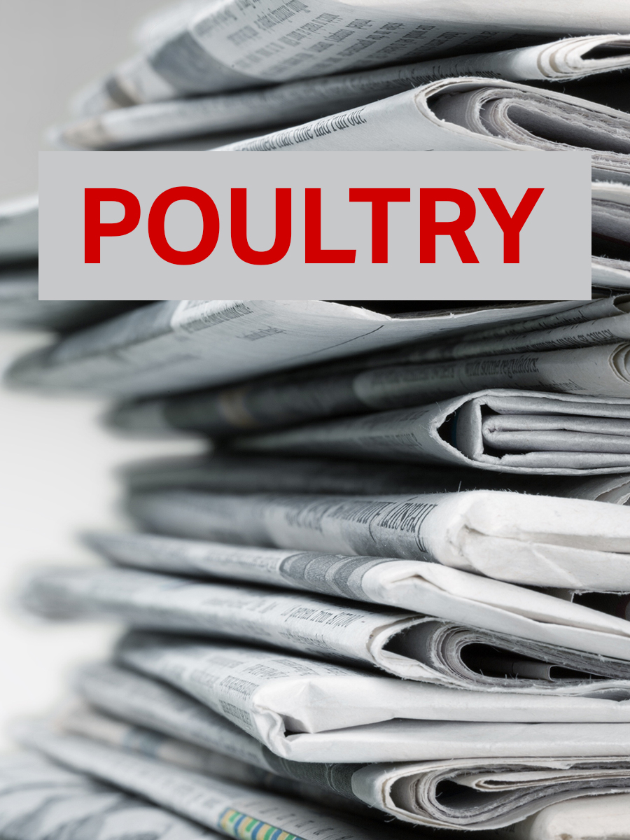 Feb 2020 Poultry Newsletter