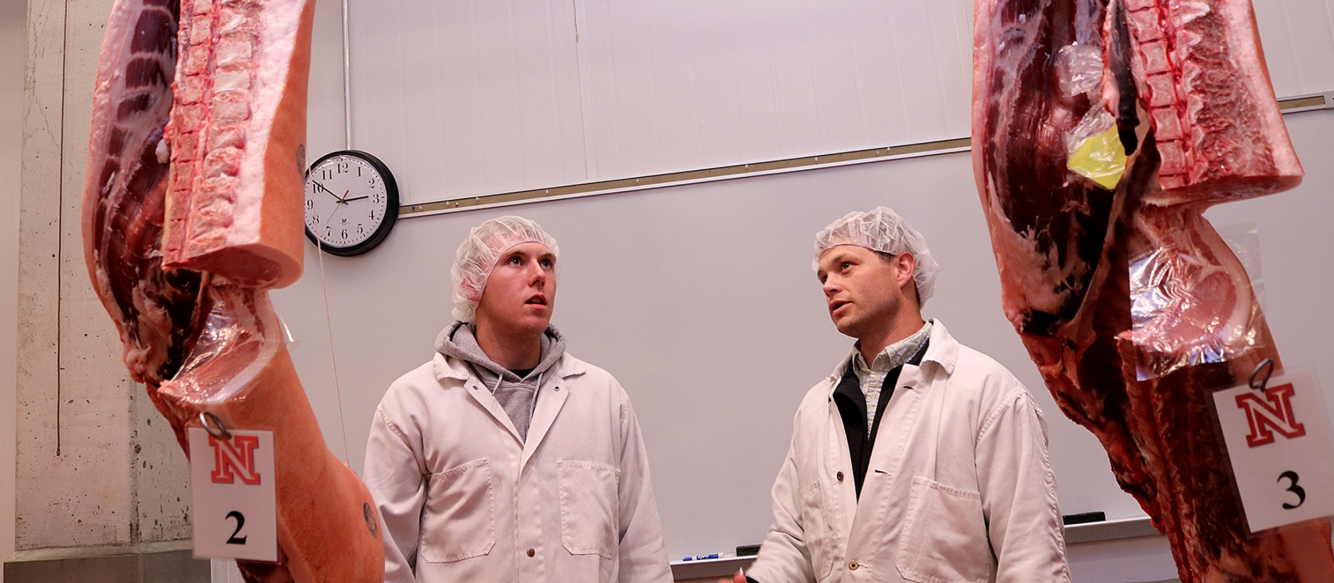 two student evaluating meat that is hanging.