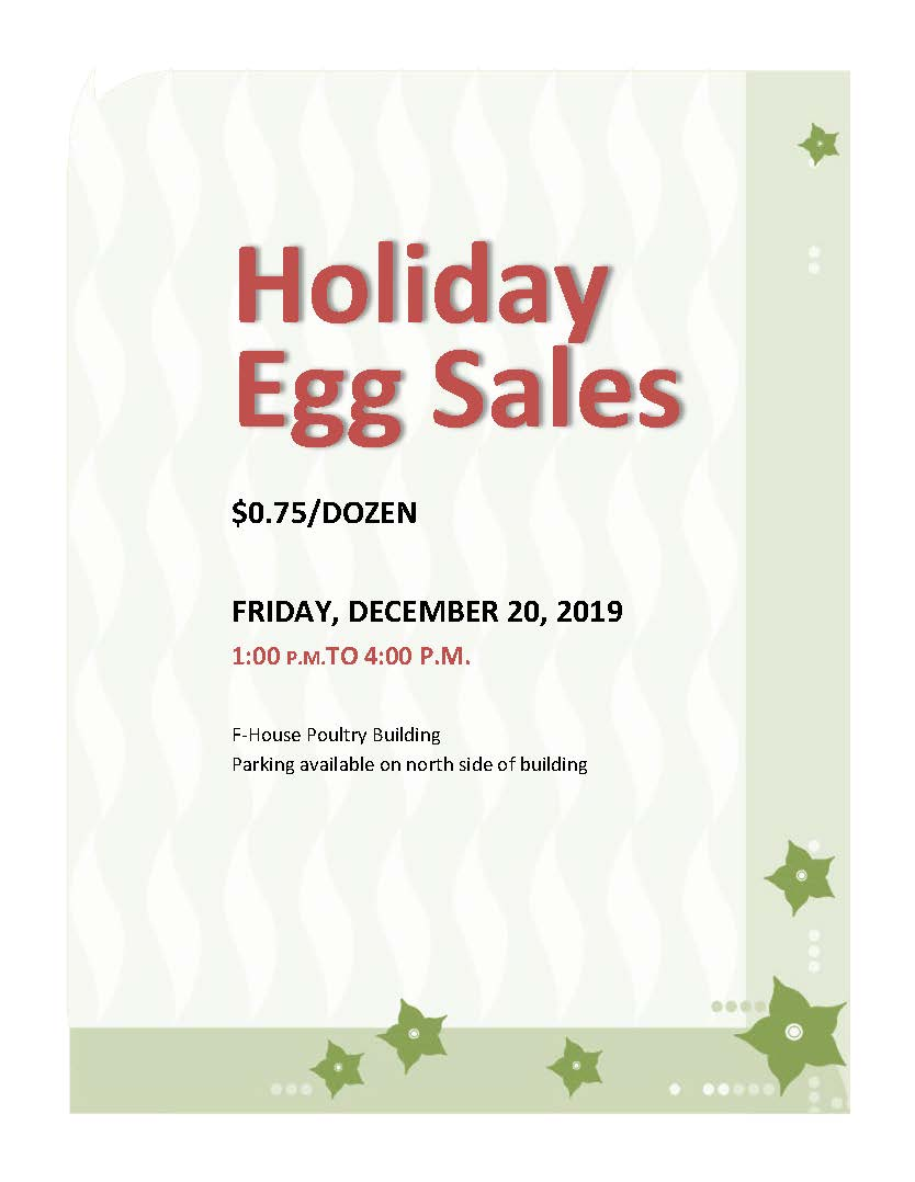 Egg Sales Flyer