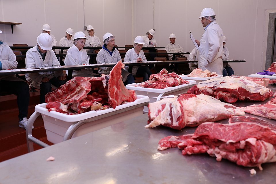 Participants learning the different cuts of meats