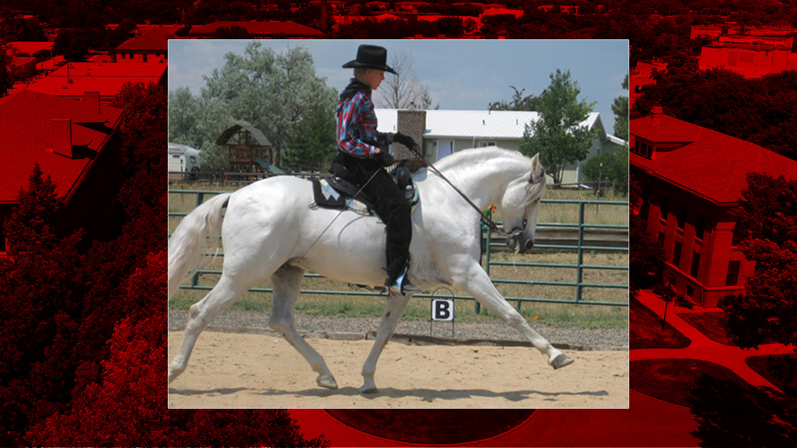 The University of Nebraska—Lincoln Department of Animal Science Extension will host its Western Dressage Clinic: What's it all About in August. Frances Carbonnel of Castle Rock, Colo. will the the featured speaker, a United States Dressage Federation Bronze, Silver and Gold medalist.