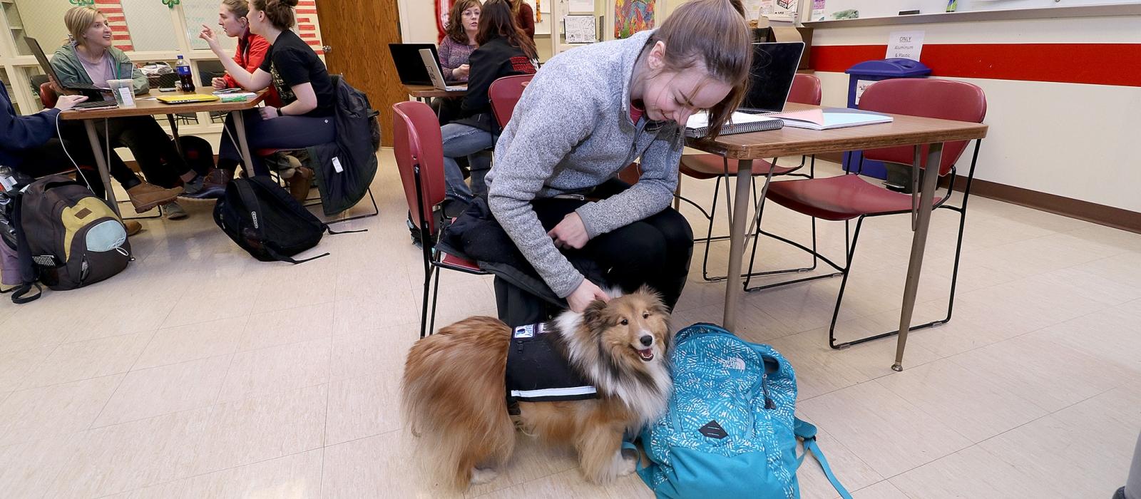 A student pets a dog.