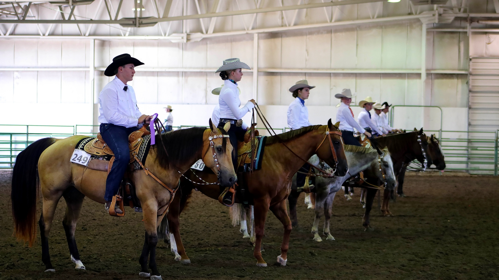 Horses and riders lined up