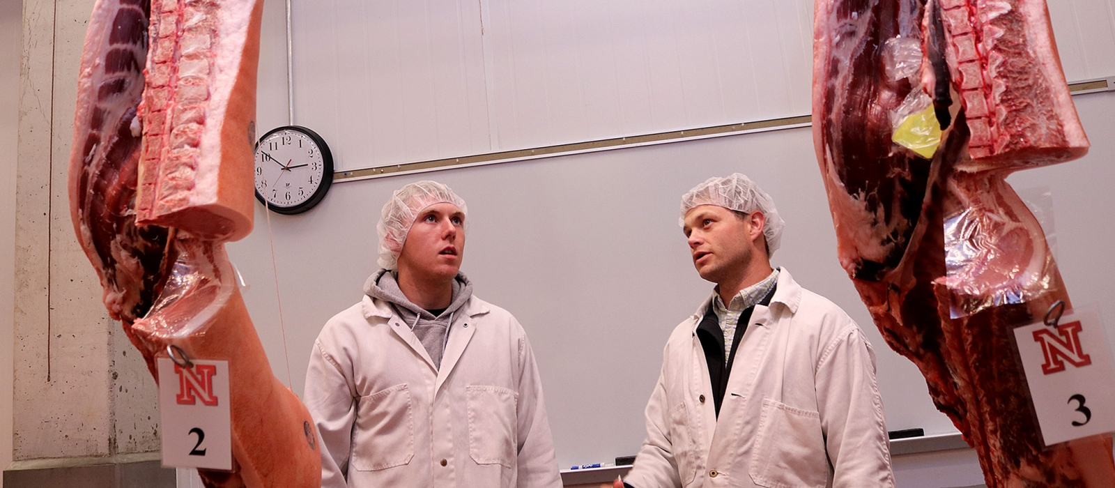 Two meat science students looks at hanging meat in the meat lab.